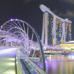 徹底攻略・シンガポール株式の長期投資