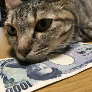 現金が「安く」なるとき、「高く」なるとき いま、証券口座に現金を眠らせることの意義とは?